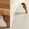 Picture of Solid Wood Mango Storage Coffee Table